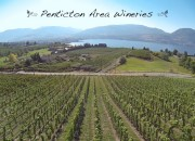 Penticton Area Wineries Picture